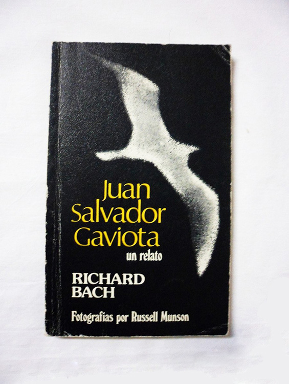 juan-salvador-gaviota01