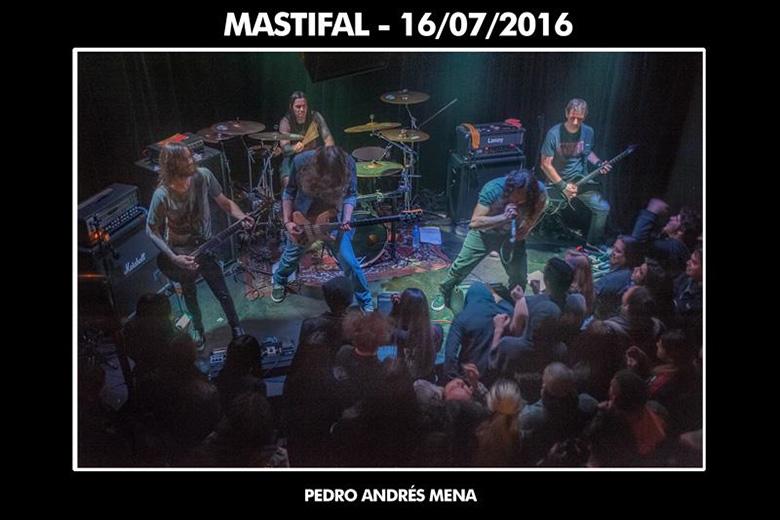 mastifal-club-v-01