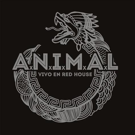 animal01