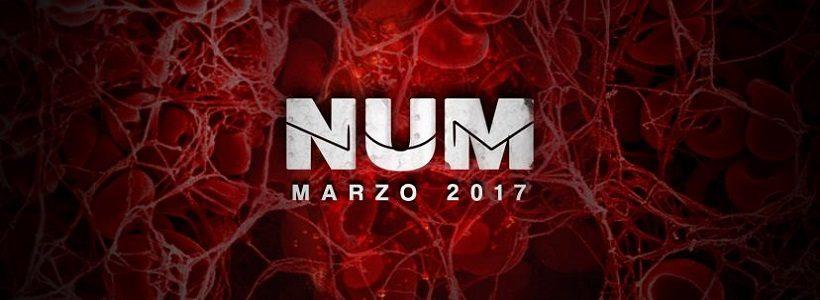 """Entrevista exclusiva con Juani de Num: """"Tocamos lo que sabemos tocar… y lo hacemos fuerte"""""""
